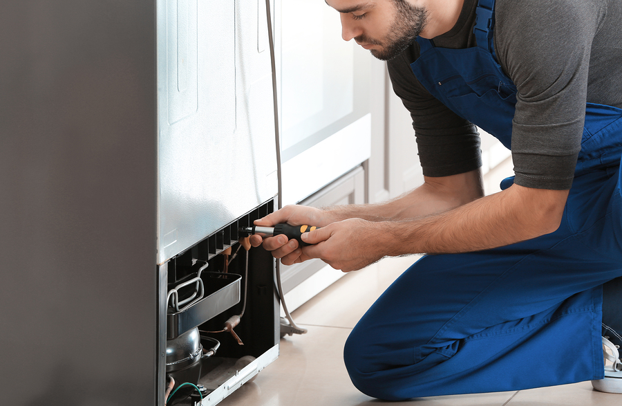Male technician is repairing refrigerator indoors
